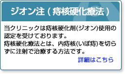 ジオン注(痔核硬化療法)